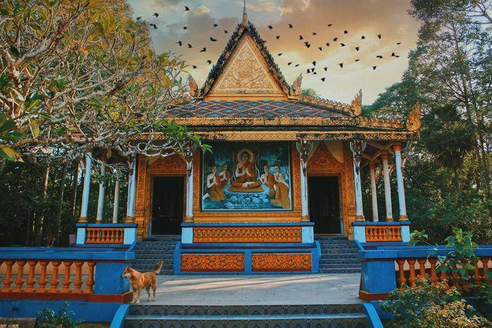 Tour Du Lịch Miền Tây Mùa Nước 4 ngày 3 đêm - Ấn Tượng Xuyên Việt